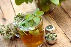 Filiżanka melissa herbata Zdjęcia Stock