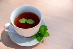 filiżanki nowy herbaty wektor Obrazy Royalty Free