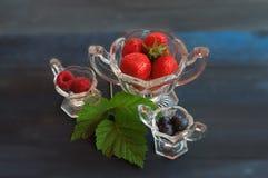 Filiżanki truskawki, rapsberries i czarne jagody, Obrazy Royalty Free