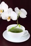 filiżanki zielonej herbaty czas Obrazy Stock