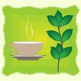 filiżanki zielonej herbaty wektor Obrazy Stock