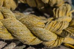 Fili della corda Fotografia Stock