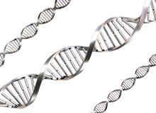 Fili isolati del DNA Immagine Stock