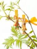 Filiais com folhas e coelhos novos Imagem de Stock