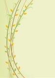 Filiais de árvore ilustração do vetor