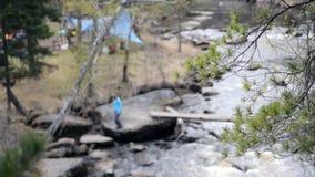 Filiais de árvore com as folhas com nebuloso em um rio e em um rolamento da montanha video estoque