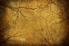Filiais de árvore de Grunge em cima do céu Fotografia de Stock Royalty Free