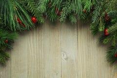 Filiais de árvore do Natal Fotos de Stock Royalty Free