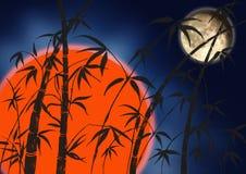 Filiais de um bambu Imagem de Stock Royalty Free