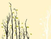 Filiais e céu de árvore ilustração royalty free