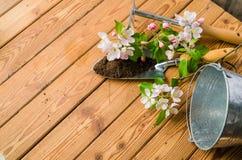 Filial av att blomstra äpplet och trädgårds- hjälpmedel på en träyttersida, Arkivbilder