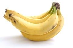 Filial av bananer på en vit bakgrund Fotografering för Bildbyråer