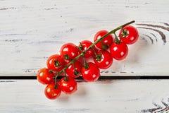 Filial av Cherrytomater Royaltyfri Foto