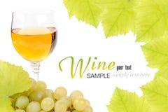 Filial av druvor och exponeringsglas av vin Arkivbilder