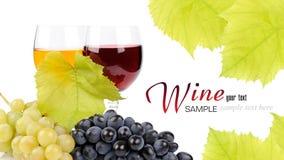Filial av druvor och exponeringsglas av wine Royaltyfri Bild
