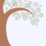 Filial av ett träd Arkivfoton