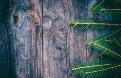 Filial av granen på en grå träyttersida fotografering för bildbyråer