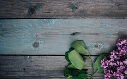 Filial av lilan på en lantlig trätabell, kopieringsutrymme fotografering för bildbyråer