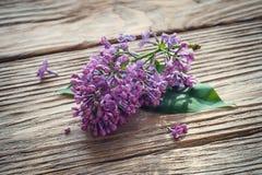 Filial av lilan på en trätabell Royaltyfri Bild