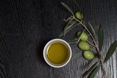 Filial av olivträdet med bär för grön oliv och locket av den nya nollan Royaltyfri Bild