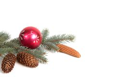 Filial da árvore, da esfera e dos cones de abeto. Fotografia de Stock
