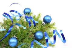 Filial de árvore do Natal e fita azul Fotos de Stock