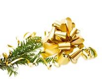 Filial de árvore do pinho do Natal com decorações Imagem de Stock Royalty Free