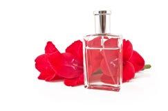 Filial de flores e de perfumes bonitos Imagens de Stock