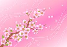 Filial de florescência Ilustração Royalty Free