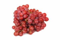 Filial de uvas vermelhas imagem de stock