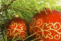 Filial decorada do pinho Imagem de Stock