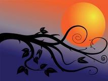 Filial e lua Ilustração do Vetor