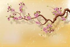 Filial för körsbärsröd blomning mot grungeväggen Royaltyfri Bild