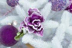 Filial för vit gran för jul, lilabollar och blommaprydnad Royaltyfri Fotografi