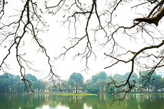 Filial i Hoan Kiem sjön Fotografering för Bildbyråer