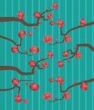 Filial med rosa körsbärsröda blommor Arkivbild