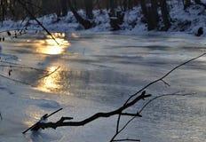 Filial- och solreflexioner på den djupfrysta floden Royaltyfria Bilder