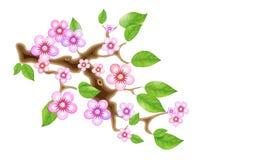Filial sakura, körsbärsröd blomning för illustration, med blommor i animestil Oortodox östlig asiatisk garneringtradition in stock illustrationer