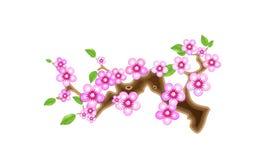 Filial sakura, körsbärsröd blomning för illustration, med blommor i animestil Oortodox östlig asiatisk garneringtradition in vektor illustrationer