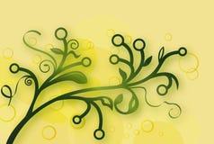 Filial verde Imagens de Stock