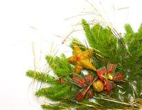 Filiale attillata fresca verde con la decorazione Immagine Stock
