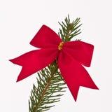 Filiale decorata dell'albero di Natale fotografie stock libere da diritti