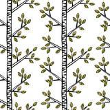 Filiale del vischio Rowan Berries Ramoscelli e foglie Fotografia Stock
