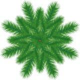 Filiale dell'albero di Natale Immagini Stock Libere da Diritti