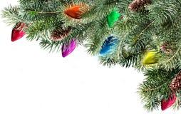 Filiale dell'albero di Natale Fotografia Stock Libera da Diritti