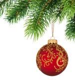Filiale dell'albero di Natale con la sfera di natale Fotografia Stock