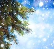 Filiale dell'albero di Natale di arte e caduta della neve Immagine Stock Libera da Diritti