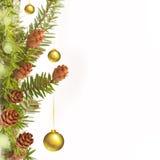 Filiale dell'albero di Natale e della decorazione Immagine Stock