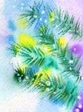 filiale dell'Pelliccia-albero illustrazione di stock