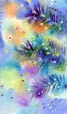 filiale dell'Pelliccia-albero con illuminazione di colore Immagini Stock Libere da Diritti